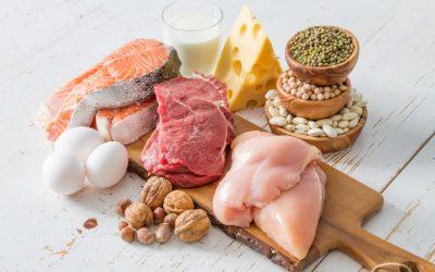Het belang van eiwitten